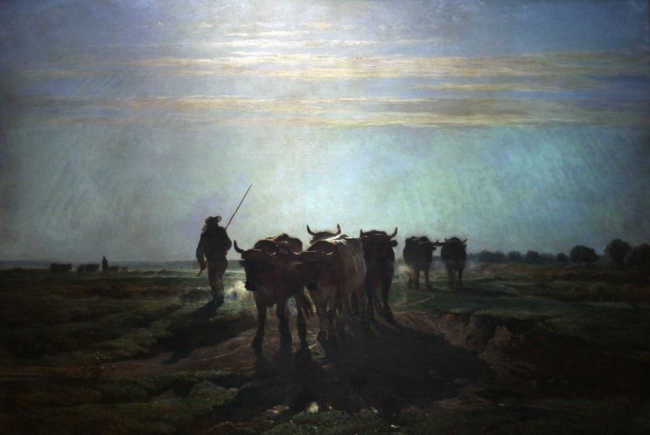Констан Тройон. Картина «Волы идут на пашню. Утреннее небо», 1855